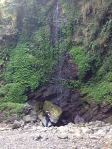 The little water fall